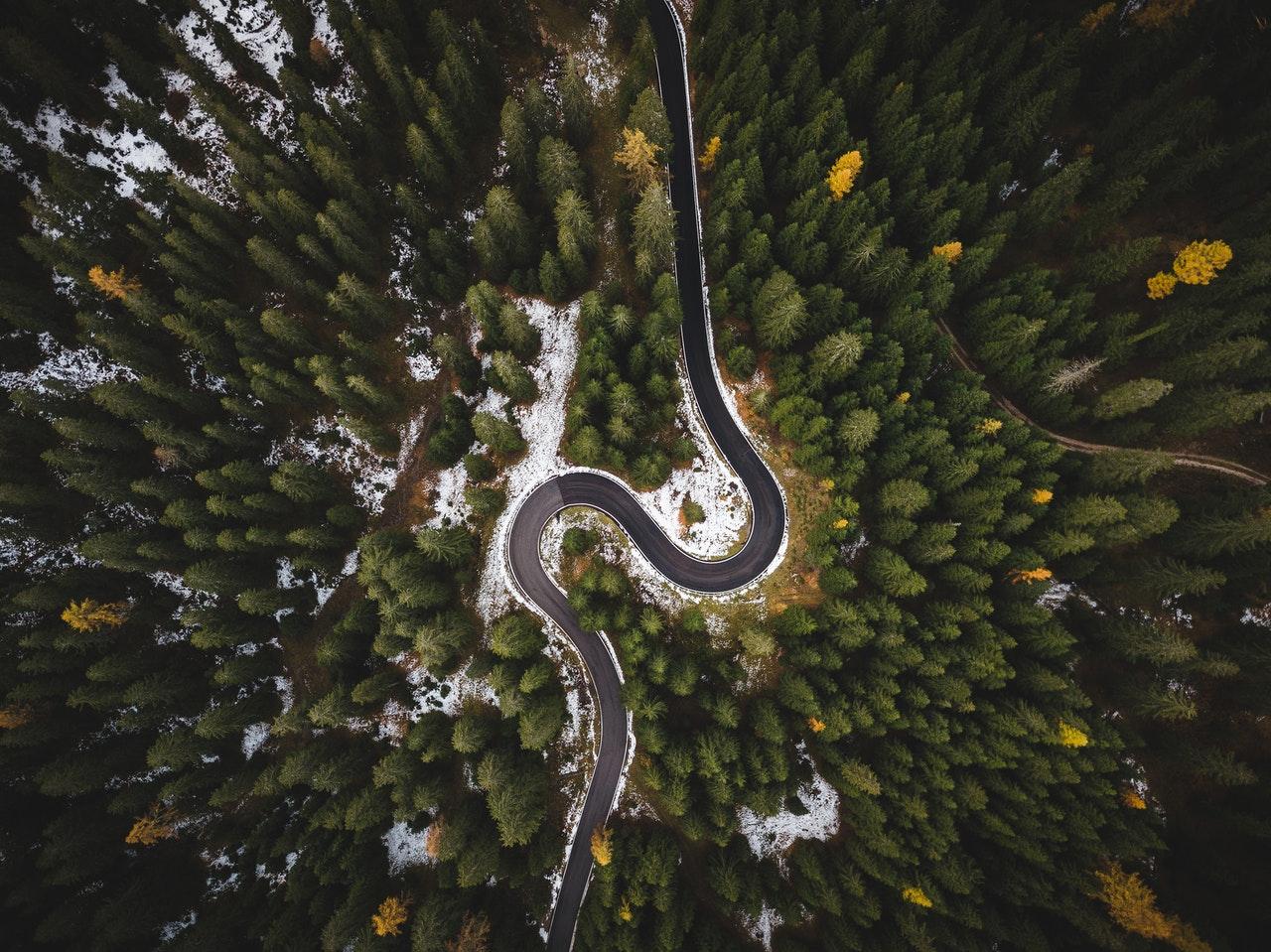 roc curve auc